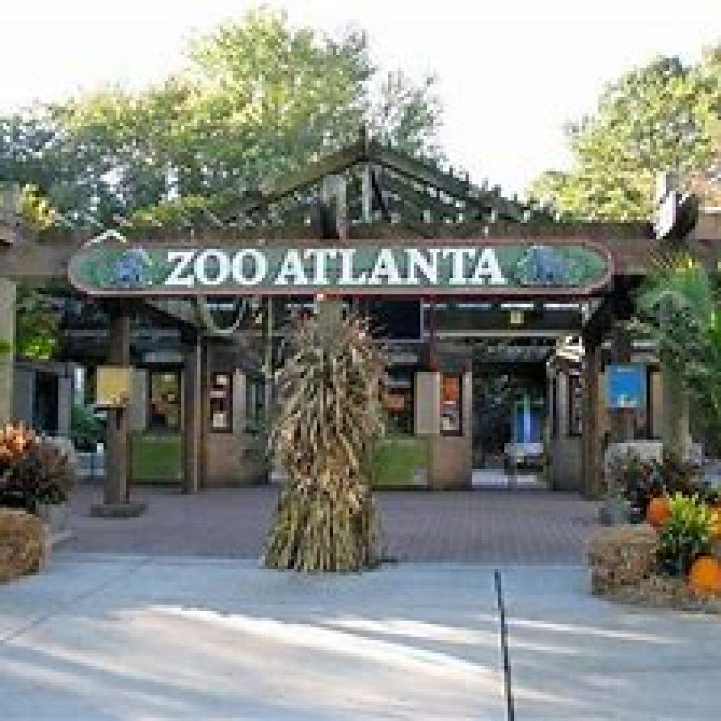 ZOO_Atlanta
